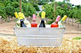 10 ijskoude DO's om wijn op temperatuur te krijgen